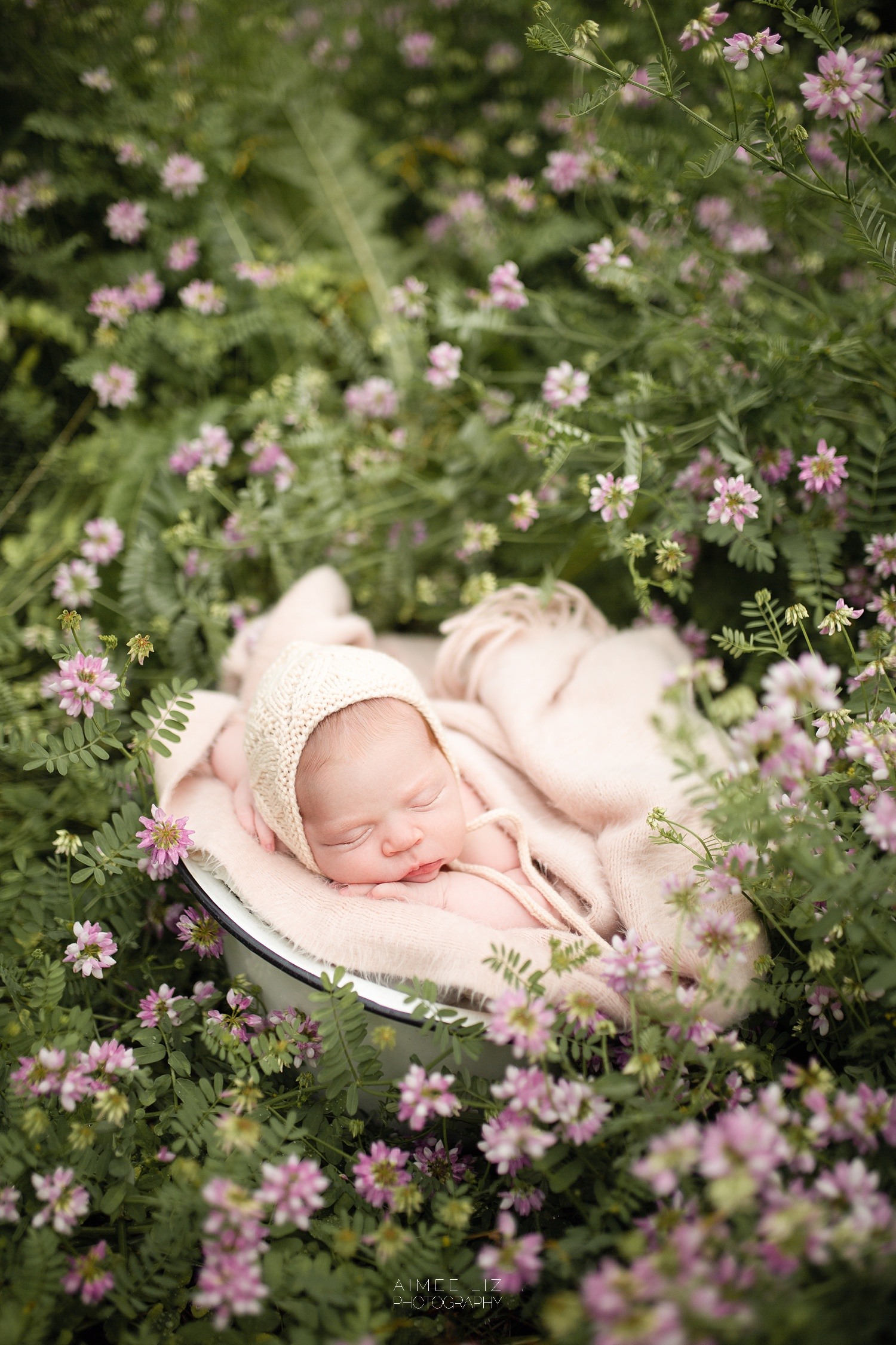 central massachusetts newborn photographer