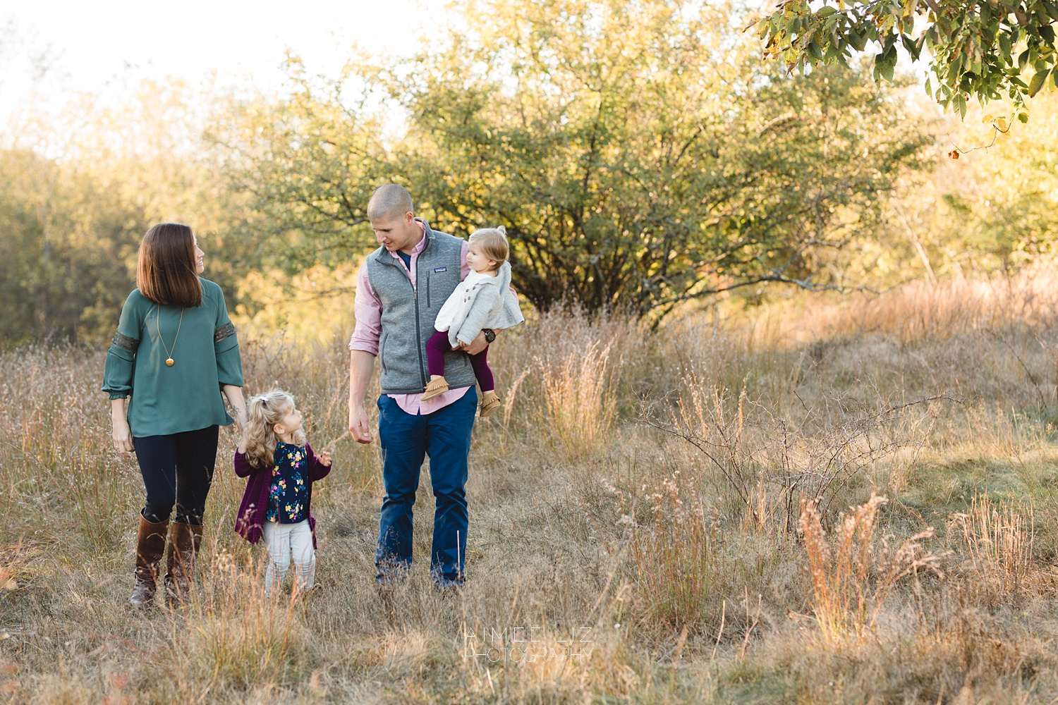 chestnut hill farm family photographer